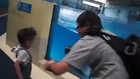 dolphin plays with boy