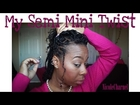 My Semi Mini Twist: MyNaturalSistas Inspired⎜HOW TO Natural Hair