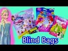 Disney Queen Elsa Frozen Color Changer Blind Bags Littlest Pet Shop Animal Rescue Hospital Orbeez