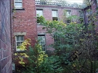whittingham abandoned mental asylum