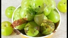 Top 3 Benefits of Amla - Health Benefits of Gooseberry - Ghar Ka Vaidh